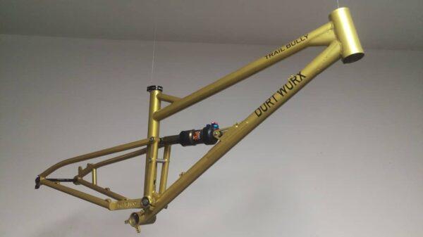 FS Marino Bike Custom Frame Monopivot