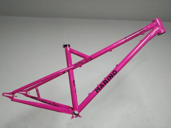 Hard Tail MarinoBike Custom Frame