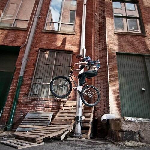 Fixed Bike MarinoBike